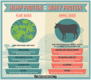 hemp protein vs whey protein
