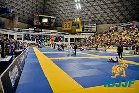 2014 WORLD JIU JITSU IBJJF