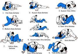 Judo Newaza-BJJ techniques.
